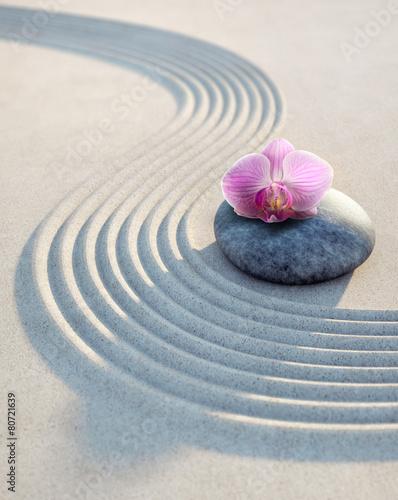 Leinwanddruck Bild Orchidee auf Stein im Sand 1