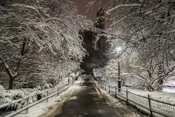 Gapstow bridge Central Park, New York City