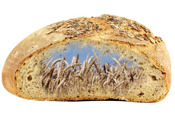 bread and golden wheat