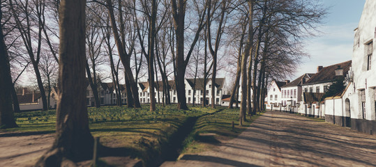 Urban park in winter with whitewashed houses