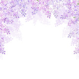 Fototapety Background with lilac flowers. Vector illustration.
