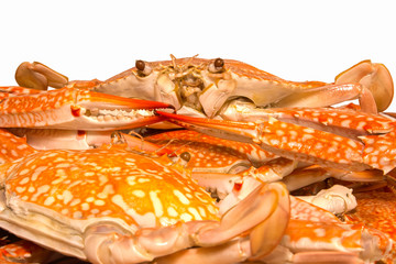 steamed crab boiled seafood