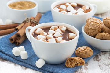 cocoa with marshmallows and almond cookies