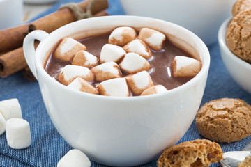 cup of cocoa with marshmallows and almond cookies, close-up
