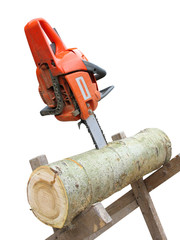 chain saw in cut of wooden log over white background