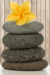 fleur de plumeria sur pyramide de galets, fond bois