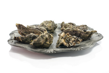 plate of expensive oysters