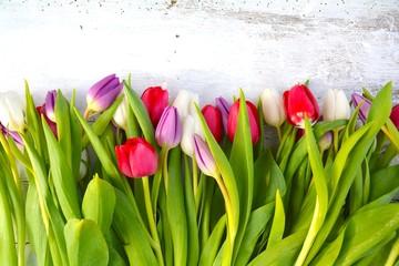 Postkarte - Tulpen - romantisch