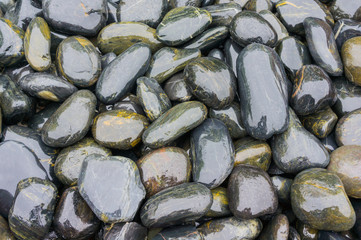 Hintergrund Kieselsteine in dunklen Grüntönen für Fußmassage