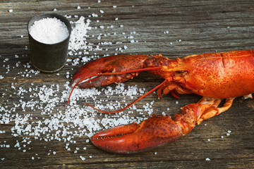 Cooked lobster with coarse salt on wood