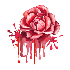 rose vector illustration  hand drawn  painted