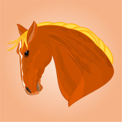 The red horse stallion head vector