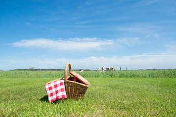 Picnic basket in the country