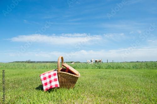 Leinwandbild Motiv Picnic basket in the country