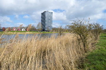 Highrise along he shore of a canal in spring
