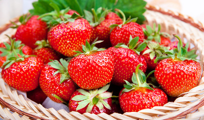 Ripe fresh strawberries in a basket