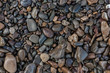 texture of wet shiny small sea stones