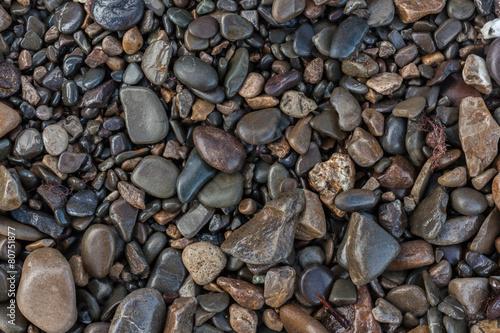 texture of wet shiny small sea stones
