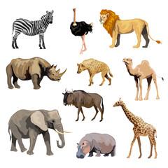 Wild African Animals Set