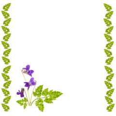decorative frame of grass with a bouquet of violets