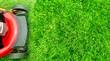 Lawn mower. - 80756604