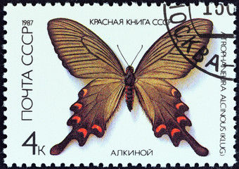 Chinese Windmill butterfly, Atrophaneura alcinous (USSR 1987)