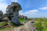 Limestone rocks in spring landscape of Poland near Ogrodzieniec - 80758618