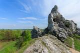 Limestone rocks in spring landscape of Poland near Ogrodzieniec - 80758621