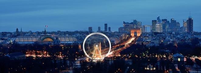 Paris depuis les toits du Louvre