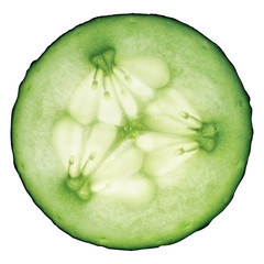 Cucumber sliced and isolated