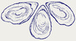 Fresh opened oyster. Doodle style - 80762686