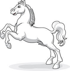 whitw horse - vector, isolated