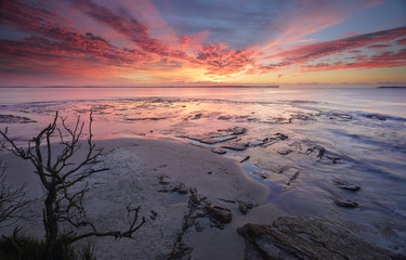 Sunrise Plantation Point Jervis Bay Vincentia