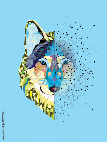 Naklejka Wolf head in geometric pattern with star line vector