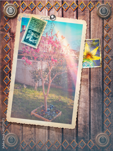 Staande foto Imagination Spring photography with flowers stamp