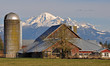Mount Baker and Barn