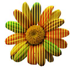 margherita con petali decorati