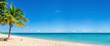 Leinwanddruck Bild - Exotic beach with gold sand, coconut palm tree and deep blue sky