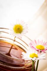 honey & daisies