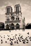 France, Paris. Notre Dame de Paris. - 80798889