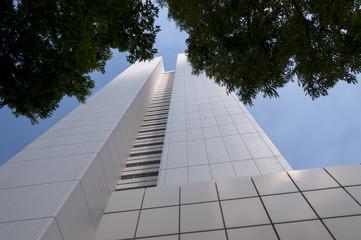 Skyscrapers in Shinjuku  region of Tokyo, Japan