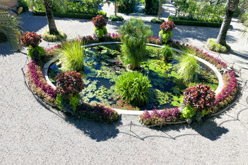 Top view Landscaped Garden pond with water plants and flowers