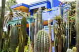 Jardin de Majorelle et cactus