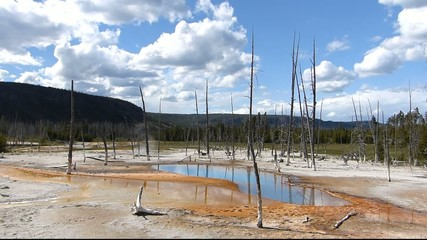Opalescent pool, Black Sand Basin, Yellowstone National Park