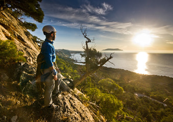 rock climber standing near tree looking on sunrise