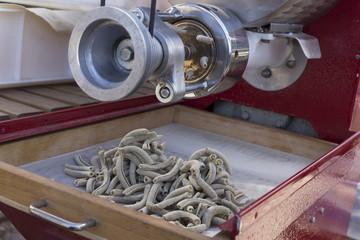 Trafila (machine to make pasta)