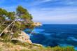 View of beautiful Cala des Moro bay, Majorca island, Spain