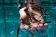 Hauttherapie mit Kangalfischen