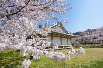 春の醍醐寺
