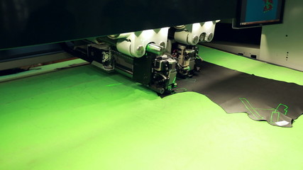 Automatic cutting of pelt. Worker controls process